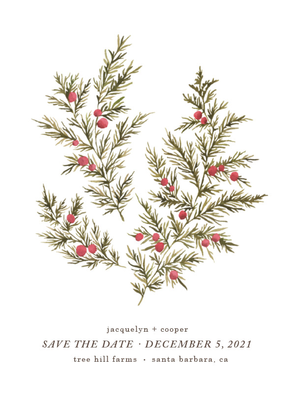 'Botanical No. 4 (Holly)' Save-the-Dates